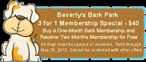 3 for 1 Bark Park Membership