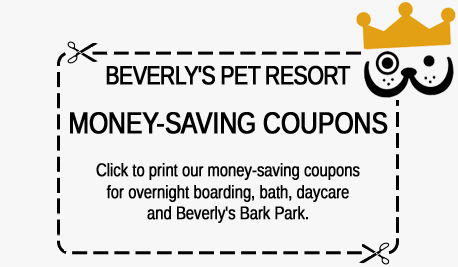 Beverly's Pet Campus Discount Coupons