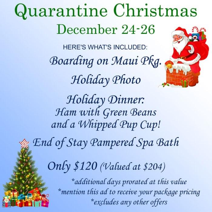 Quarantine Christmas December 24-26
