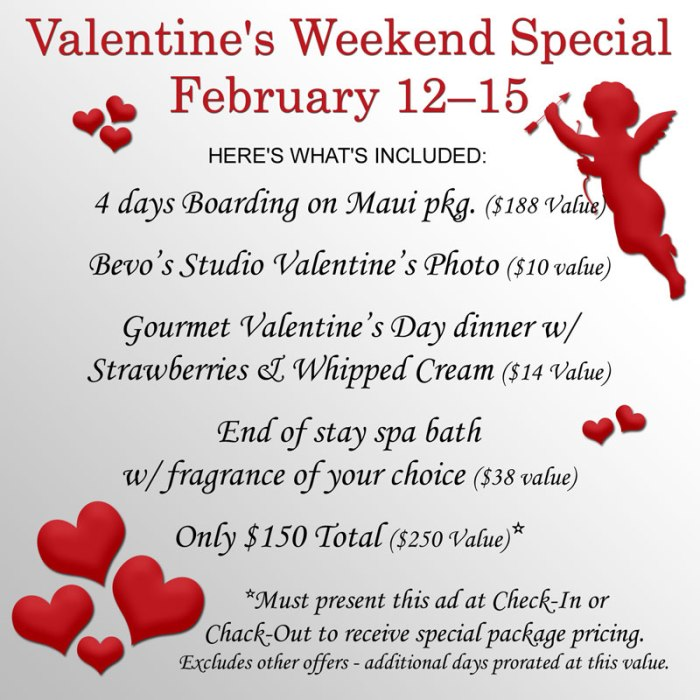 Valentine's Weekend Boarding Special Package – February 12-15, 2021